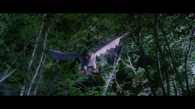 Not only that, but a CG owl! AM I WATCHING BIRDEMIC!?!?