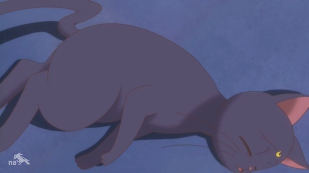 """""""Oh the pain! Oh the pain of it all!! AVENGE ME USAGI!!!!"""""""